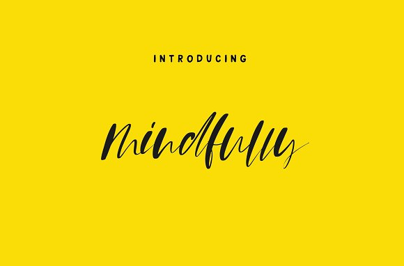 105 in 1 | Hand-Lettered Font Bundle in Script Fonts - product preview 32