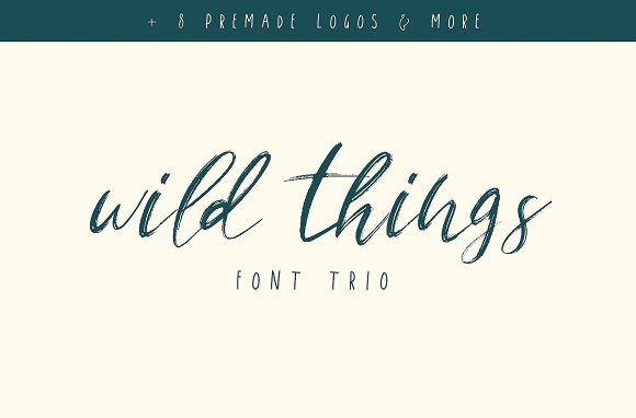 105 in 1 | Hand-Lettered Font Bundle in Script Fonts - product preview 41