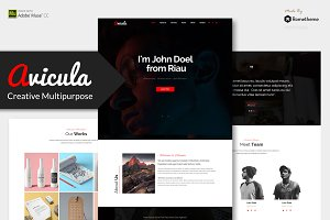 Avicula - Creative Adobe Muse Theme