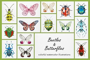Beetles & Butterflies