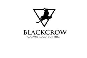 Blackcrow Logo