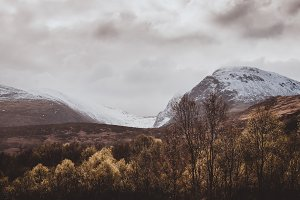 Moody Mountainlandscape with Forest