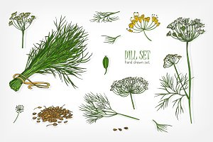 Set of dill