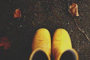 Garden boots. 2000x1333 - 350dpi