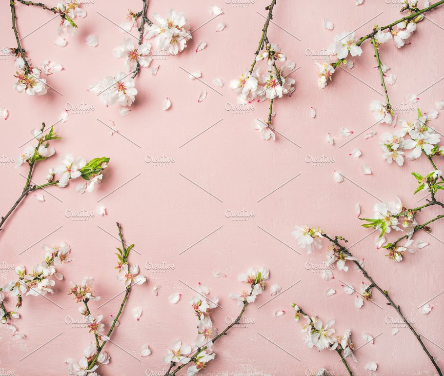 Spring Almond Blossom Flowers Over Light Pink Background Abstract