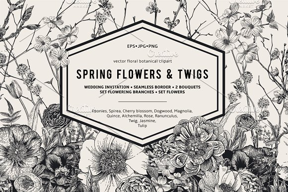 Spring Flowers Twigs Bw Illustrations Creative Market