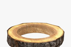 Wood Log Ring Low-Poly