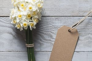 White narcissus flowers and card