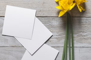 Yellow narcissus flowers and notes