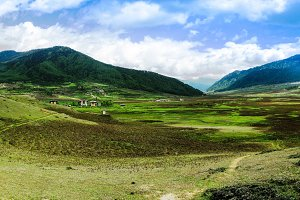Landscape of mountain Phobjikha vall