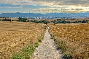 Way of Saint James in Navarre