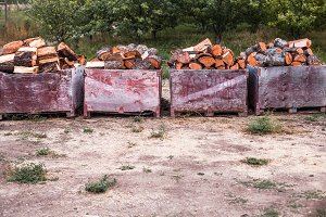 firewood in apple bins in orchard