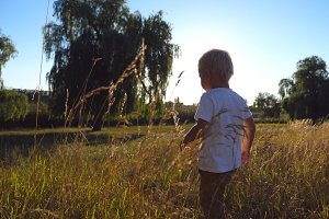 Little kid with blonde hair going at the field on a sunny day. Boy walking on green grass at summer. Happy child enjoying nature at the meadow. Beautiful landscape at background. Side view Close up