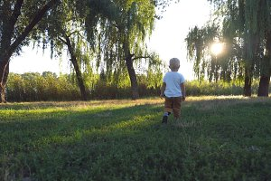 Little child with blonde hair walking in the park on a sunny day. Young kid going on green grass at summer. Happy baby enjoying nature at the meadow. Sunlight at background. Rear back view Close up
