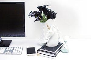 Whimsical Desktop Stock Photo