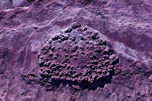 Surface Of Stone In Ultra Violet