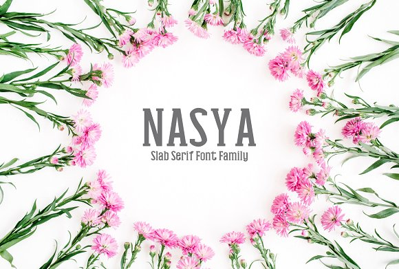Nasya Slab Serif 4 Font Family Pack