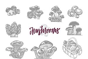 Mushroom In Engraved Icon Set