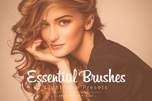 Essential Lightroom Brush Presets