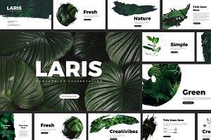 Laris Brush Powerpoint Templates