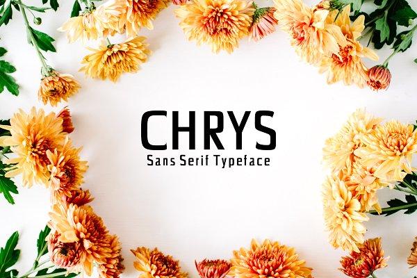 Chrys Sans Serif Font Family Pack