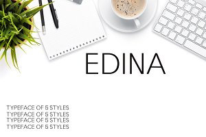 Edina Sans Serif Minimal 5 Font Pack