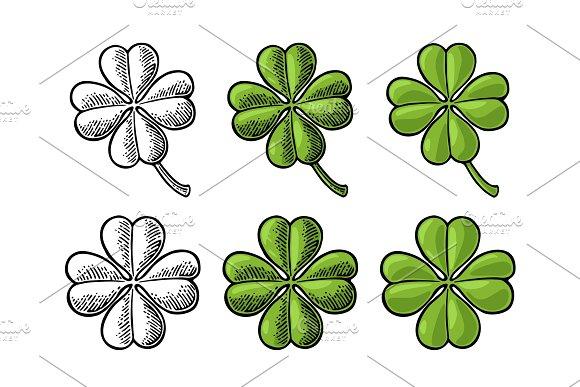 Good Luck Four Leaf Clover Vintage Vector Color