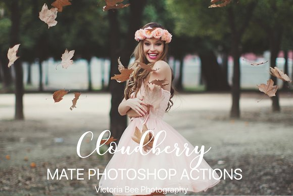 CLOUDBERRY Photoshop Actions