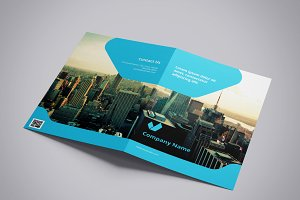 Business Brochure V799