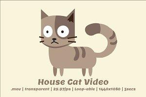 2D Cartoon Cat Video