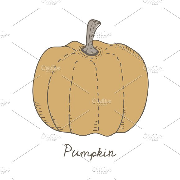 Illustration Of A Pumpkin