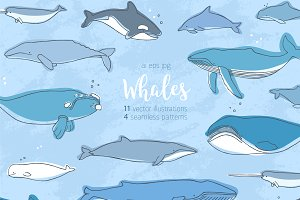 whales set and seamless