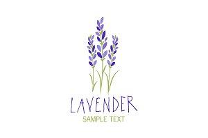 Lavender Edition I (Logos)