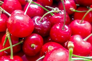 group of red cherries