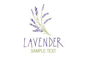Lavender Edition V (Logos)
