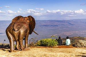 Elephant's view over the Rift Valley