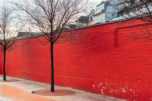 Red Wall with Trees in Winter