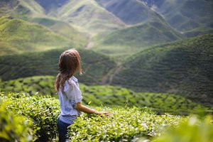 Woman on Tea Plantation
