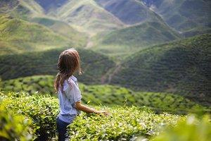 Woman on Tea Plantation