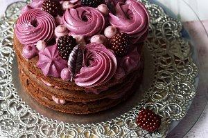 Naked Chocolate-Blueberry Cake
