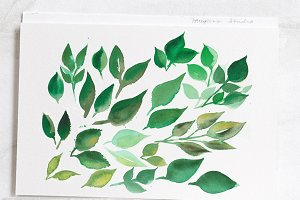 Watercolor Green Leaves Clip Art