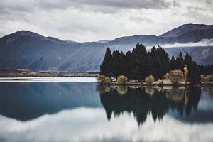 Moody Lake Landscape with Trees