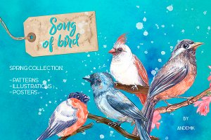 Song of bird. Watercolor clipart