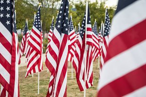 Field of Veterans Day American Flags