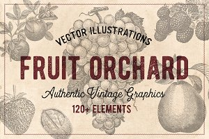 120 Vintage Fruit & Nuts (Vector)