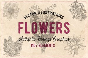 110 Vintage Flowers & Plants Vector