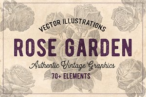 70 Vintage Rose Illustrations