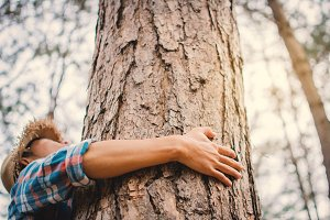 Man hugging big tree