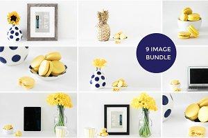 Yellow + Navy Styled Stock Bundle