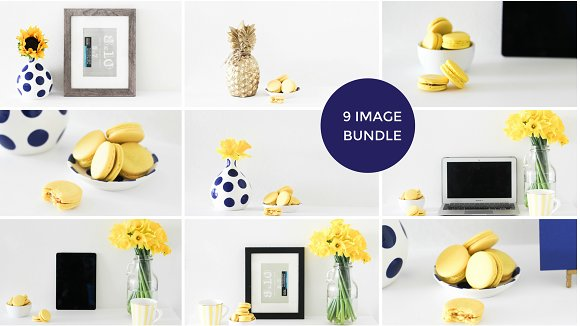Yellow + Navy Styled Stock Bundle